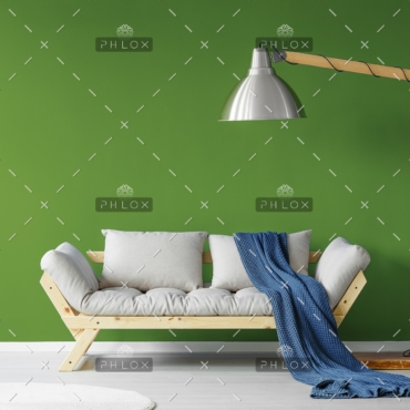 demo-attachment-490-cozy-sofa-in-living-room-PQR5AB9
